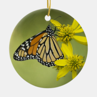 Unattached Purity Ceramic Ornament