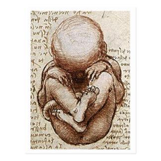 Unborn child postcard