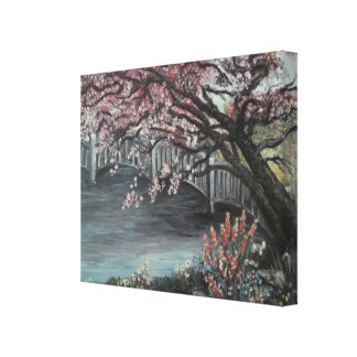 Under the Cherry Blossom Tree Stretched Canvas Prints