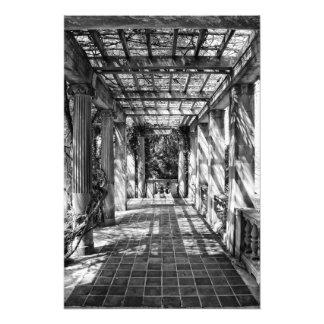 Under The Columns Photo Print