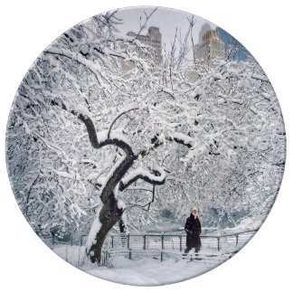 Under The Cover Of Snow Porcelain Plates