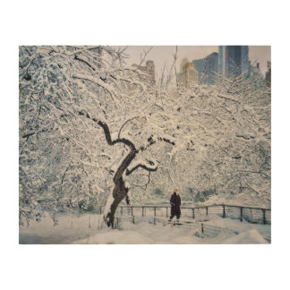 Under The Cover Of Snow Wood Wall Art