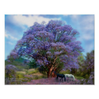 Under The Jacaranda Art Poster/Print Poster