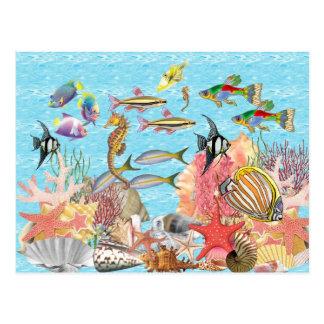 Under the sea postcard