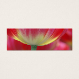 under the skirt of tulips mini business card