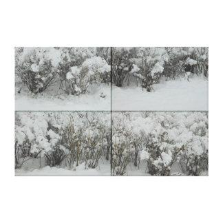 Under the snow. Bushes Canvas Print