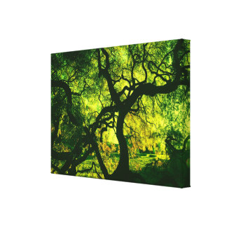 Under The Tree in Green and Yellow Canvas Print
