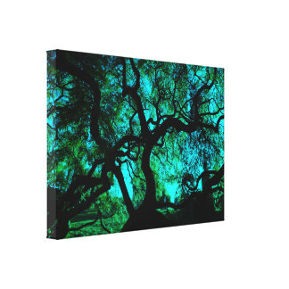 Under The Tree in Turquoise II Canvas Print
