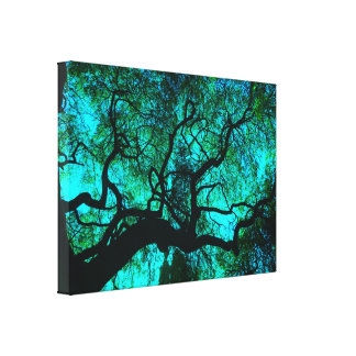 Under The Tree in Turquoise III Canvas Print