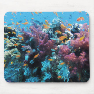 Under water Coral and Fish Mouse Pad