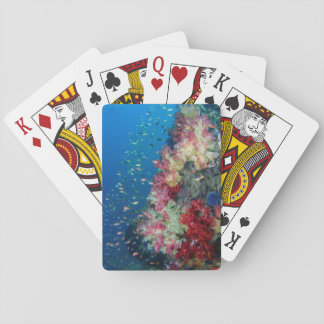 Underwater coral reef, Indonesia Playing Cards