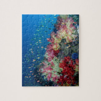 Underwater coral reef, Indonesia Puzzle