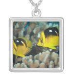 Underwater Life; FISH:  A pair of Fourspot Silver Plated Necklace