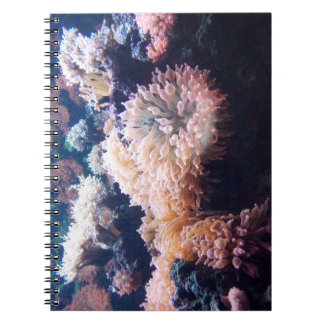 Underwater note book 80 lined sides