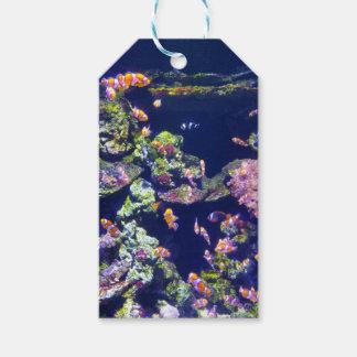 Underwater Orange Clown Fish Around Coral Gift Tags
