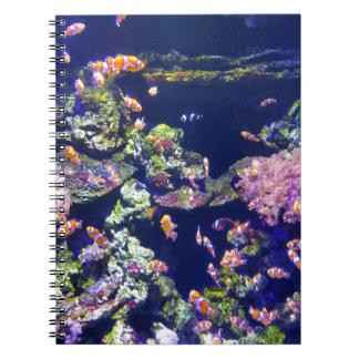 Underwater Orange Clown Fish Around Coral Notebooks