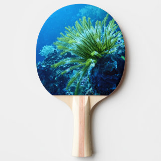 underwater ping pong paddle