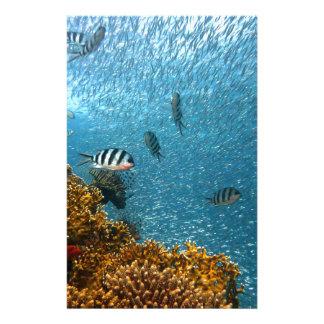 Underwater world personalised stationery