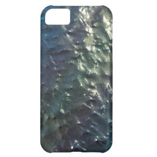 Unfinished Metal Metallic Skins iPhone 5C Case