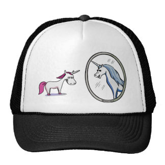 Unicorn before mirrors - Unicorn in front OF Cap