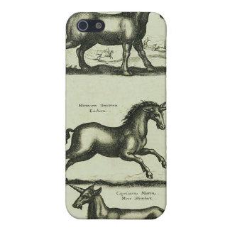 Unicorns iPhone 5/5S Case