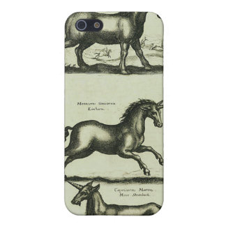 Unicorns iPhone 5 Cases