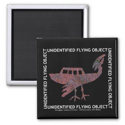Unidentified Flying Object Magnet