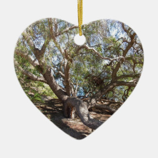 Unidentified Tree on the California Coast Ceramic Ornament