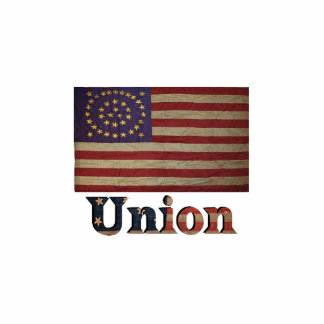 Union Army USA Civil War Flag Photo Sculpture Decoration