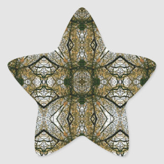 Unique Abstract Pattern Star Sticker