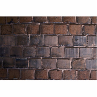 Unique Brown Brick Wall Photo Cut Out