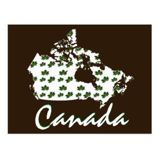 Unique fun Canadian Maple Canada  post card