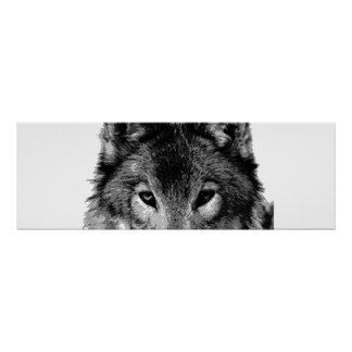 Unique Grey Wolf Eyes Motivational Poster Print