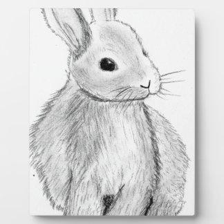 Unique Hand Drawn Bunny Plaque