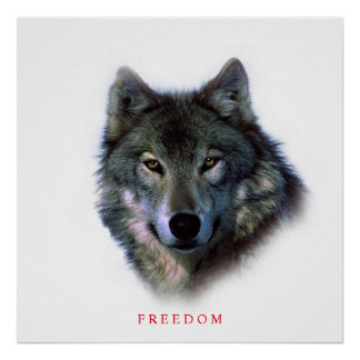 Unique Square Motivational Freedom Wolf Poster
