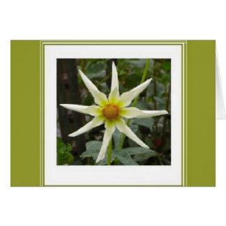 """Unique """"Star"""" Flower Notecard"""