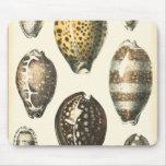 Uniquely Shaped Seashells Mousemat