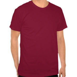 Unisex American Apparel One Color T-Shirt