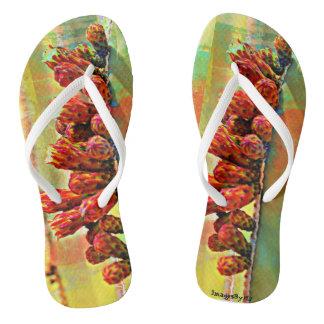 Unisex Flip Flops - Cactus Bloom in Paint Thongs