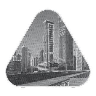 United Arab Emirates, Dubai, Dubai City.