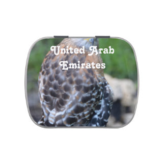 United Arab Emirates Falcon Candy Tins
