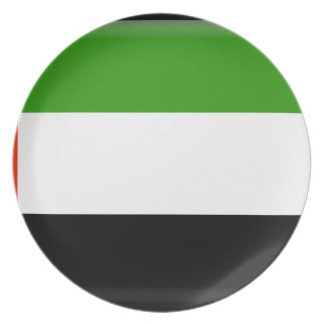 United Arab Emirates Party Plate