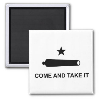 united states america historic flag symbol come a magnet