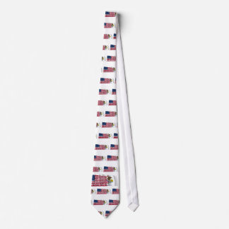 United States and Illinois Waving Flags Tie