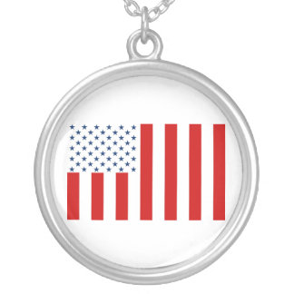 United States Civil Flag Sons of Liberty Variation Round Pendant Necklace