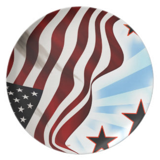United States flag Party Plate