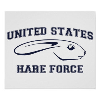 United States Hare Air Force Bunny Poster
