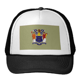 United States New Jersey Flag Hat