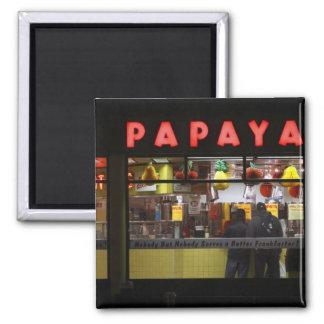 United States, New York. Gray's Papaya: window Magnet