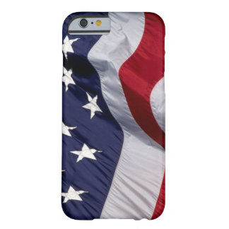 United States of America Flag Barely There iPhone 6 Case